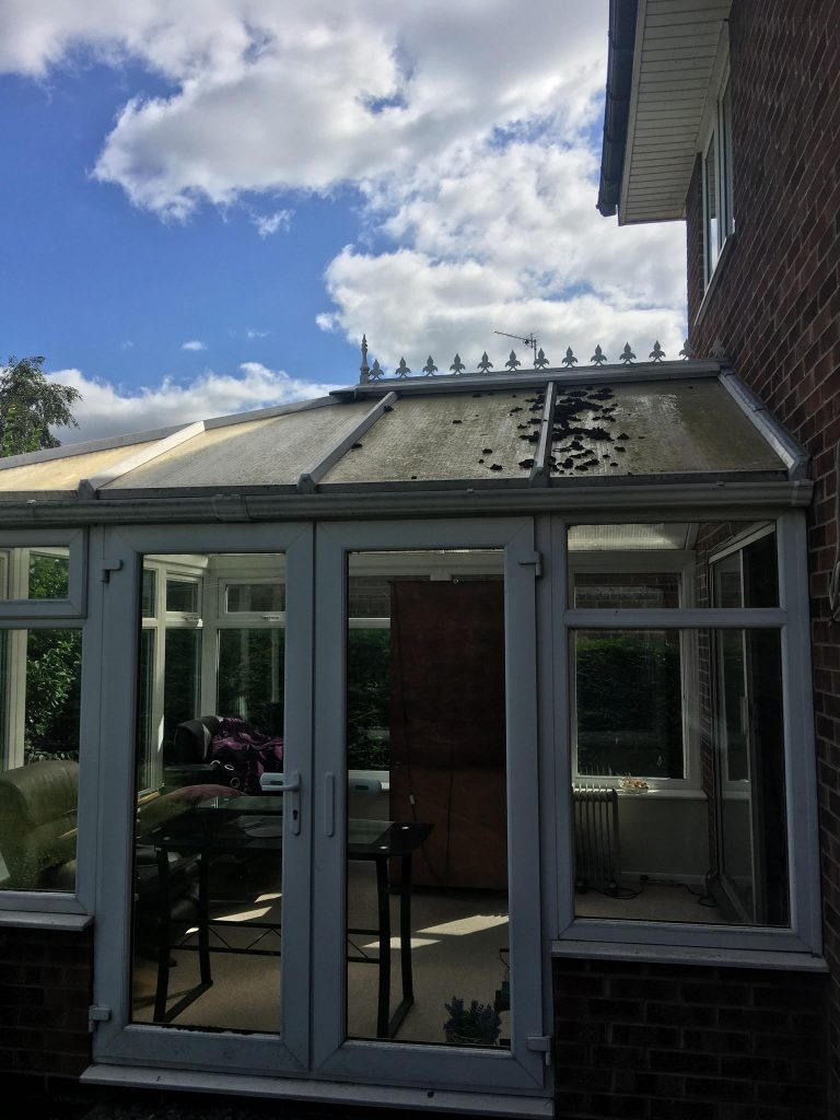 conservatory roof cleaning eccles
